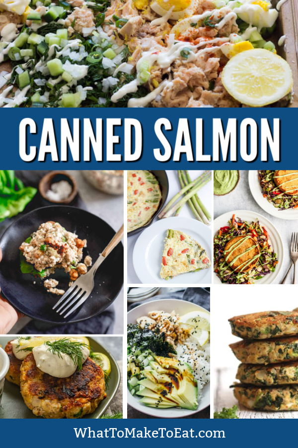 Collage of several canned salmon recipes