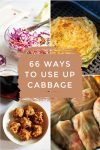 "Collage of cabbage dishes. Text reads ""66 ways to use up cabbage"""