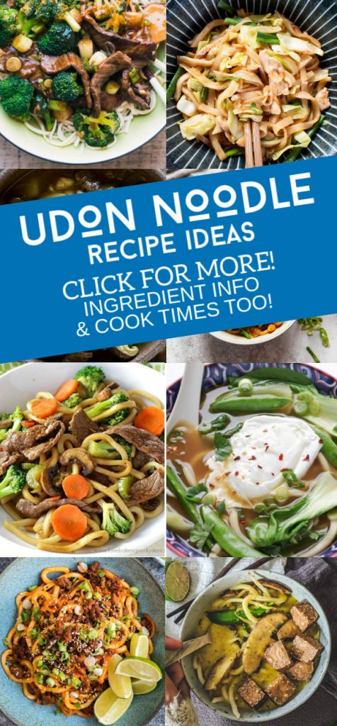 """Images of dishes made with Udon Noodles. Text reads """"Udon Noodle Recipe Ideas. Click for More! Ingredient info & cook times too!"""""""
